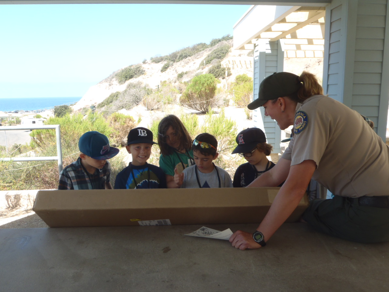 Field trip information crystal cove school group reservations field trips crystal cove nvjuhfo Image collections