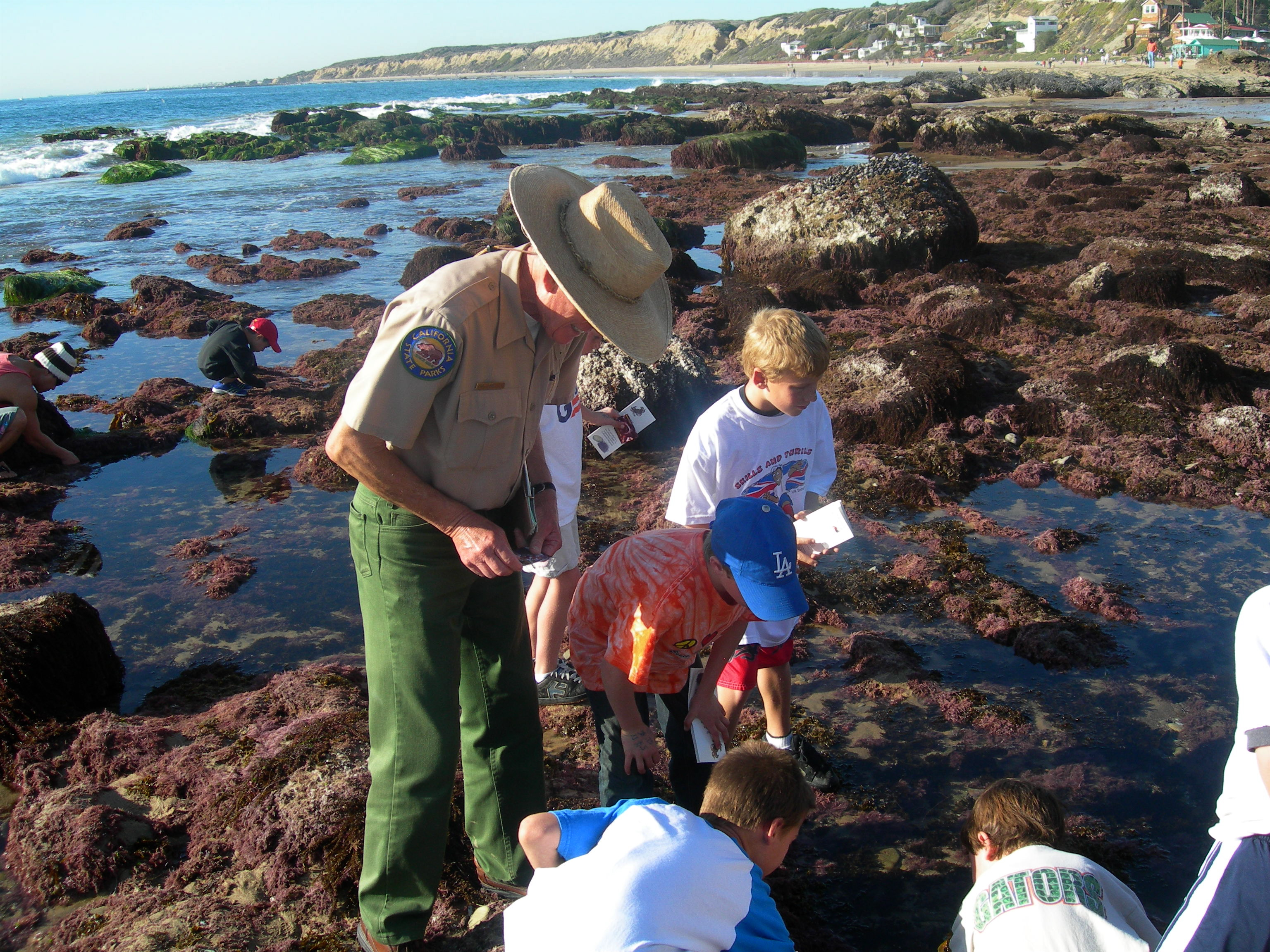 Field trip information crystal cove nvjuhfo Image collections