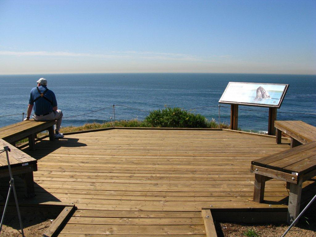 Special event scenes crystal cove pelican pt boardwalk overlook nvjuhfo Image collections