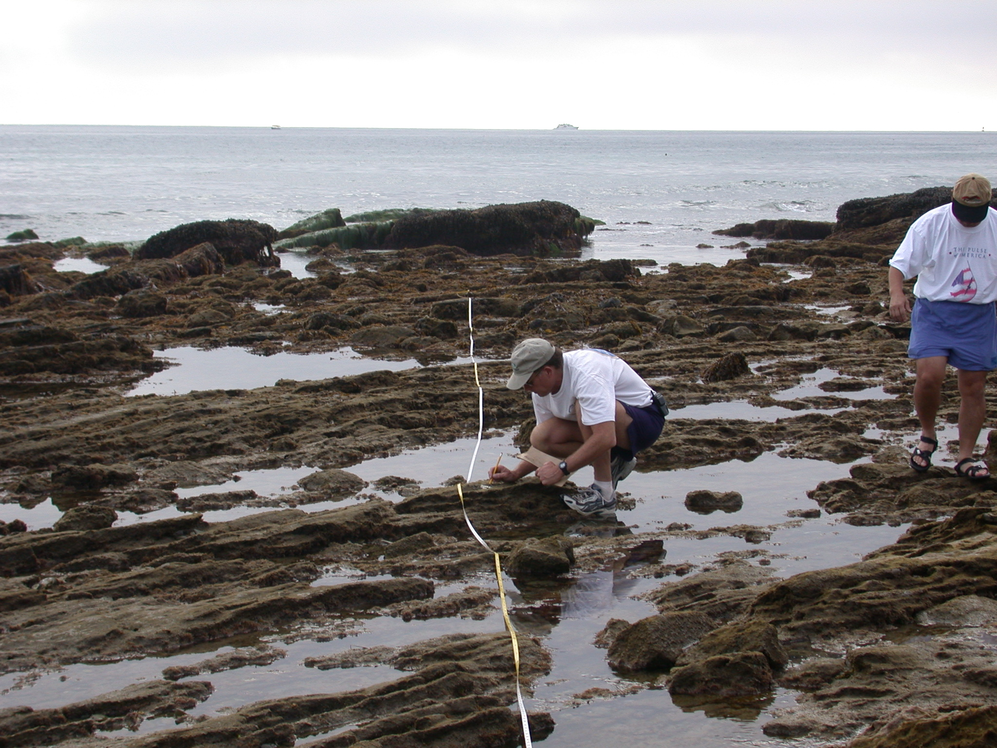 Natural resource management crystal cove nvjuhfo Image collections